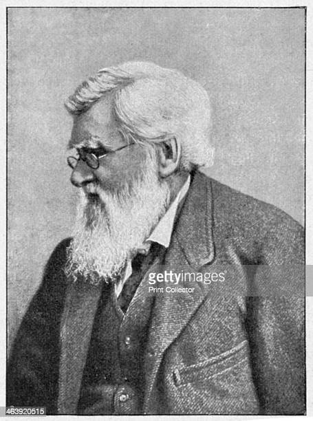 Alfred Russell Wallace Welsh naturalist c1895 Wallace formulated a theory of evolution independently of Charles Darwin Reading Wallace's theory in...