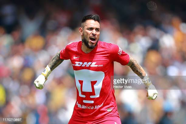 Alfredo Saldivar of Pumas celebrates after the first goal of his team during the 10th round match between Pumas UNAM and Cruz Azul as part of the...