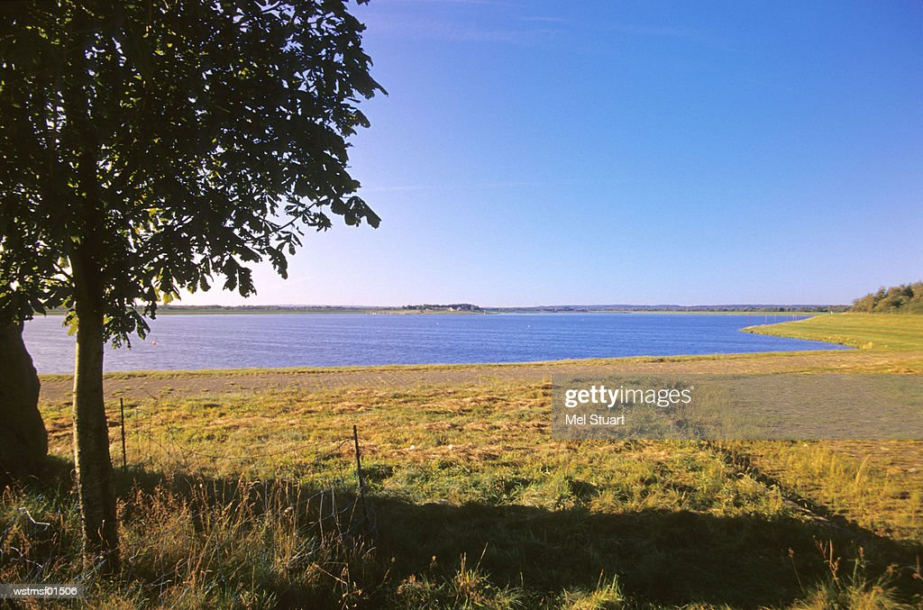 Alfsee near Bersenbrueck, Osnabruecker country, Germany : Stock Photo