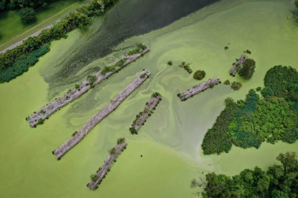 LA: Combination Of Rising Sea Levels And Subsiding Land Endanger Louisiana Coast