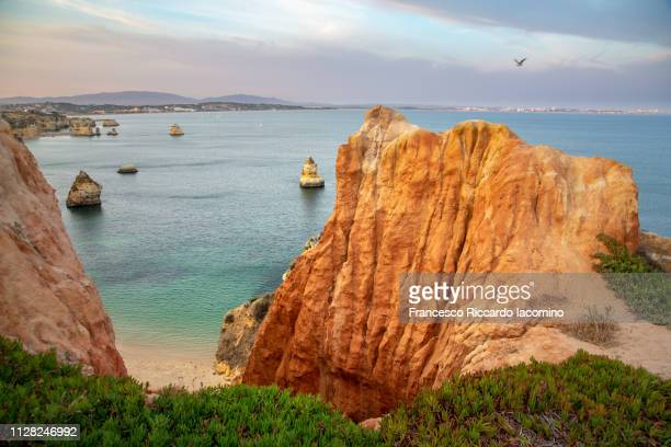 algarve, praia do camilo at sunset. portugal, europe - iacomino portugal foto e immagini stock