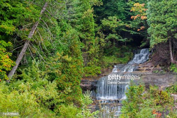 alger falls in autumn, munising, upper peninsula, michigan, usa - munising michigan stock pictures, royalty-free photos & images