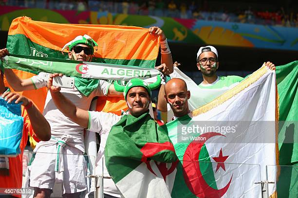 Algeria fans cheer prior to the 2014 FIFA World Cup Brazil Group H match between Belgium and Algeria at Estadio Mineirao on June 17 2014 in Belo...