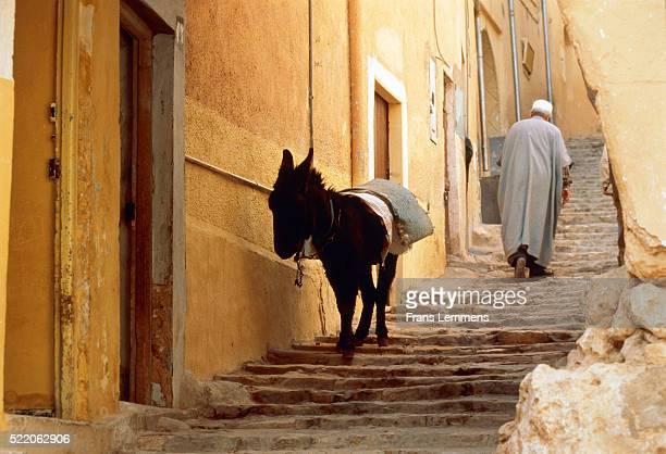 Algeria, M'zab, Ghardaia, man and donkey on stairs in a narrow street