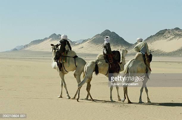 Algeria, Sahara desert, three men on camels