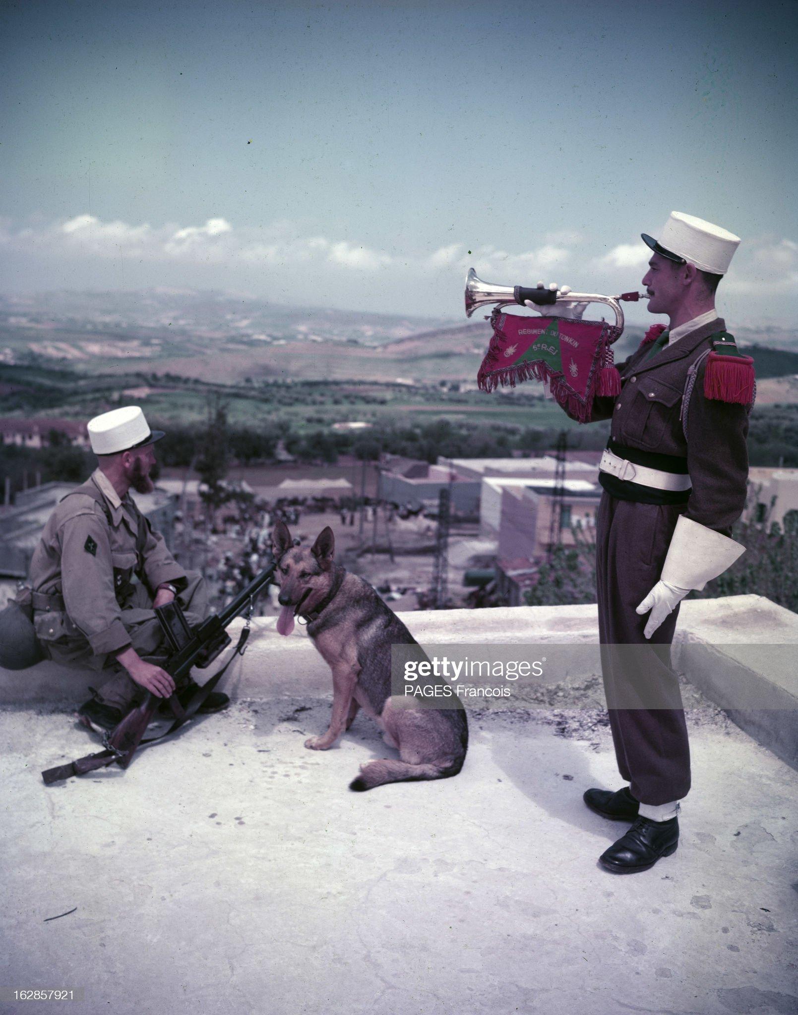Image du 15/02/2021 Algeria-the-foreign-legion-arrives-in-oran-algrie-fvrier-1956-les-picture-id162857921?s=2048x2048