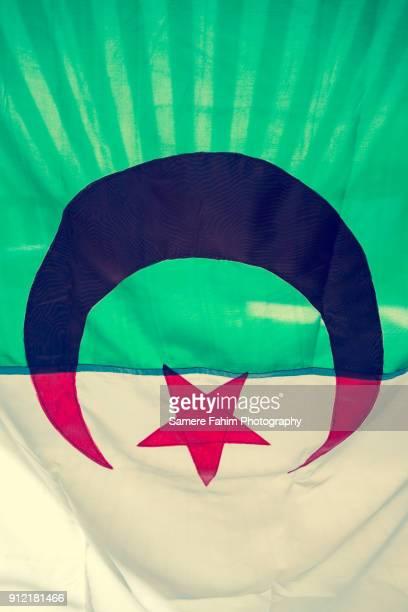 30 Meilleures Drapeau Algérien Photos Et Images Getty Images