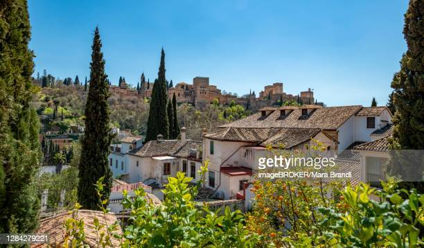 alhambra on the sabikah hill, moorish city castle, nasrid palaces, palace of charles the fifth, granada, andalusia, spain - granada provincia de granada stock pictures, royalty-free photos & images