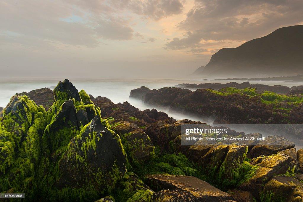 Al-Houta Rocky beach : Stock Photo