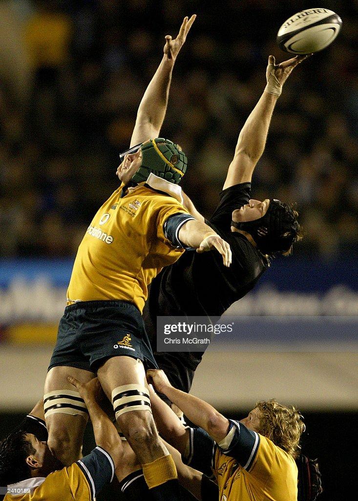 Tri-Nations - New Zealand v Australia