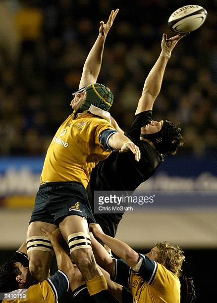 Ali Williams of the All Blacks wins a lineout over Daniel Vickerman of the Wallabies during the Tri Nations second Bledisloe Cup match between the...