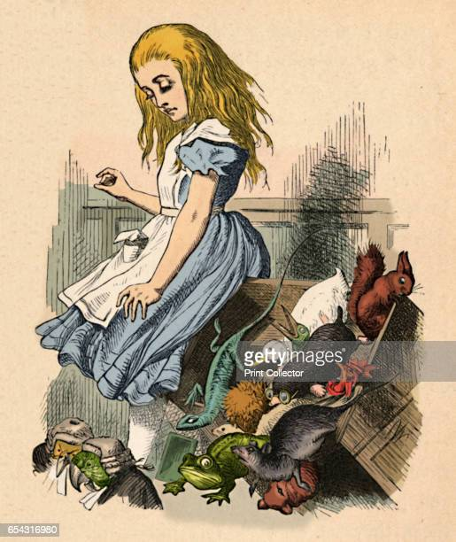 Alice and animals Chaos and the court 1889 Lewis Carrolls Alice in Wonderland as illustrated by John Tenniel From Alices Adventures in Wonderland by...