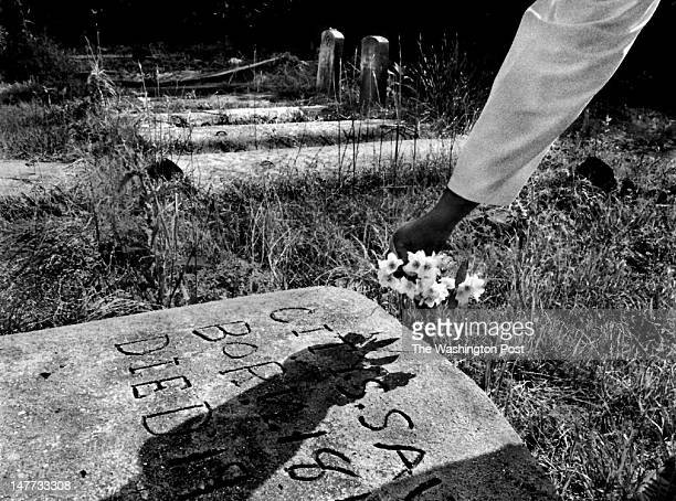 FILE Alice Coles a Bayview community activist puts flowers on the grave of City Saunders an exslave who has many relatives in the area that Coles...