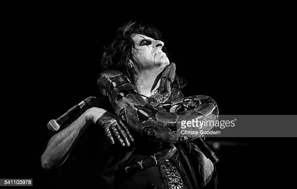 Image has been converted to black and white Color version not available LONDON ENGLAND JUNE 18 Alice Cooper performs on stage with a snake at The O2...