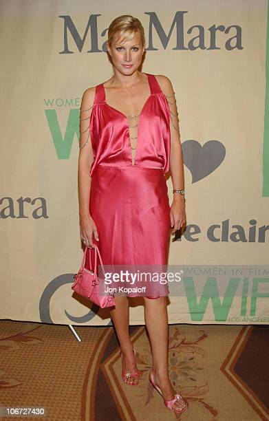 Alice Evans during 2004 Crystal Lucy Awards Women in Film Celebrates the Paltrow Family Arrivals at The Westin Century Plaza Hotel in Century City...