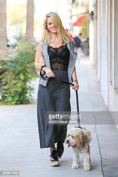 Alice Eve is seen walking her dog 'Buddy' on November 16 2016 in Los Angeles California