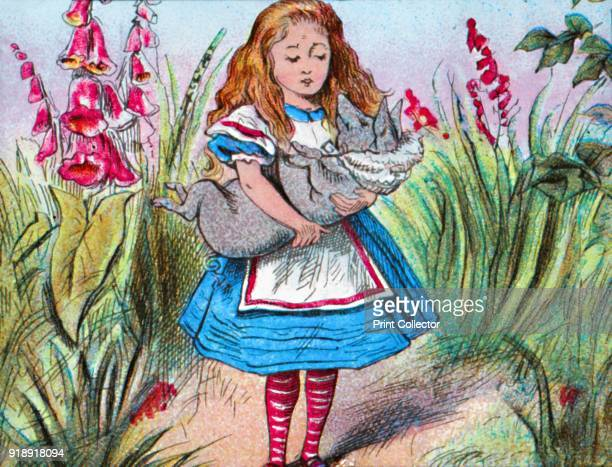'Alice holding a pig in her arms' c1910 From Alice in Wonderland by Lewis Carroll [W Butcher Sons London c1910]Artist John Tenniel