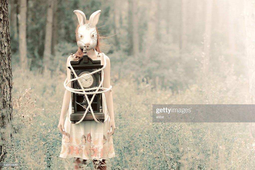 Alice in Wonderland : Stock Photo