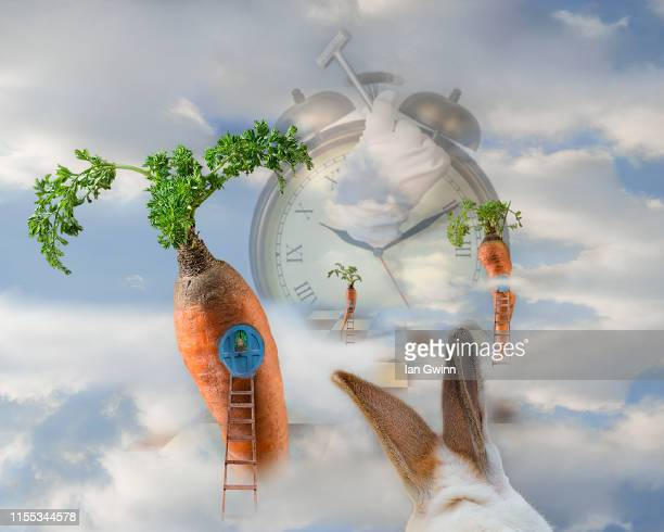 alice in wonderland scene - ian gwinn stock photos and pictures