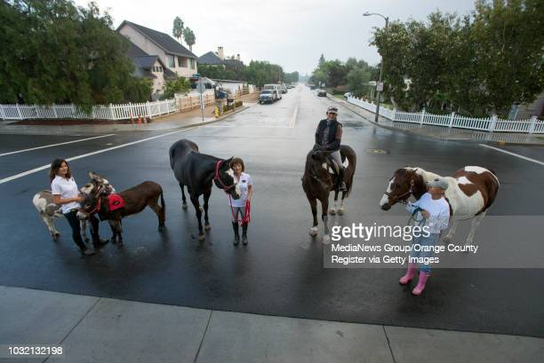 Alice Krezymon with donkeys Isabella and Scout left Annette Murphy with Oreo Jeanne Rodriguez in her horse Forest and Vickie Tombrello with Skippy...