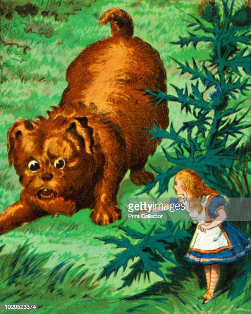 Alice meets a very large puppy' circa 1900 After the illustrations by John Tenniel From Coloured Lantern Slides Primus Junior Lecturers' Series No...