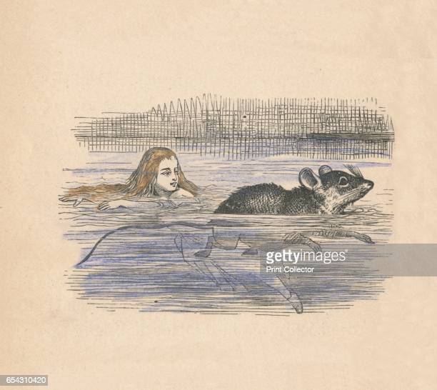Alice swimming with a mouse in a pool 1889 Lewis Carrolls Alice in Wonderland as illustrated by John Tenniel From Alices Adventures in Wonderland by...