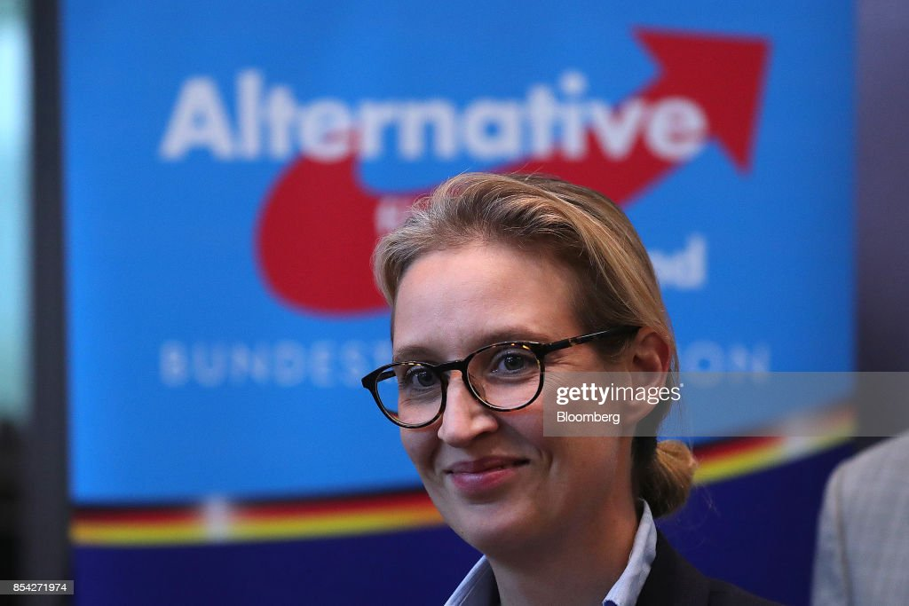 Alternative For Germany News Conference Following Caucus Meeting