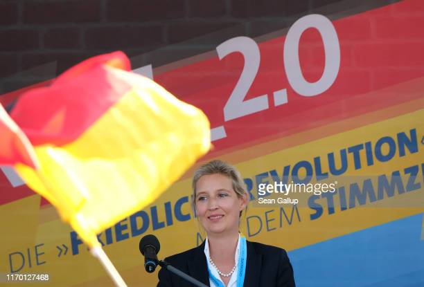 Alice Weidel, co-leader of the Bundestag faction of the right-wing Alternative for Germany political party, speaks to supporters while campaigning...