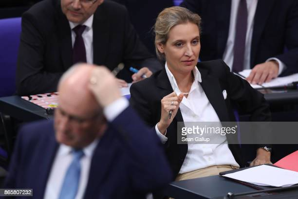 Alice Weidel of the rightwing Alternative for Germany attends the opening session of the new Bundestag as Volker Kauder of the German Christian...