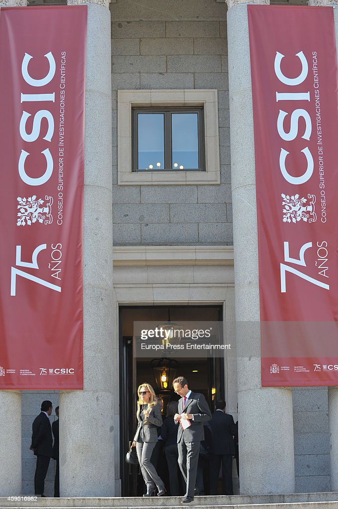 Alicia Koplowitz attends the 75th aniversary of CSIC at CSIC headquarters on November 24, 2014 in Madrid, Spain.