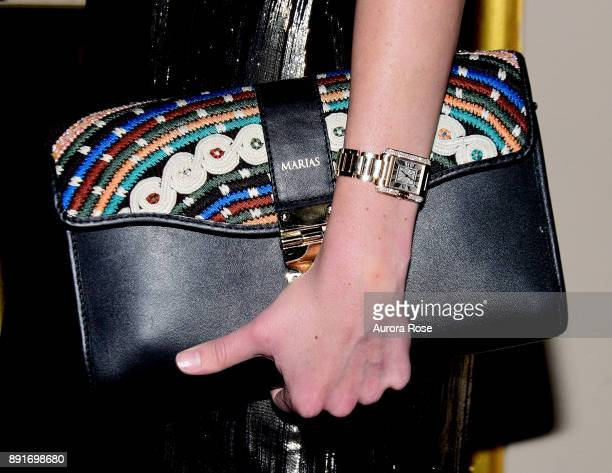 Alida Boer purse detail at Casita's Fiesta 2017! at The Plaza Hotel on October 17, 2017 in New York City.