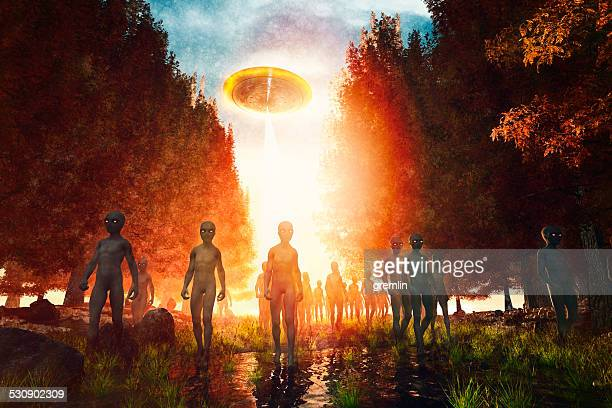 alien invasion in the forest, scary, dark, invasion - alien stock pictures, royalty-free photos & images