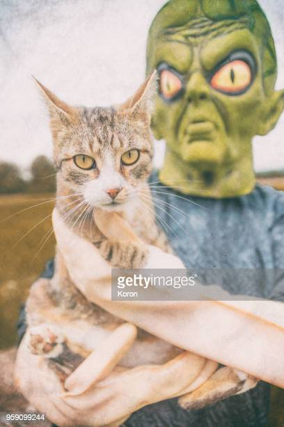 alien playing with a cat - scaredastronaut stock pictures, royalty-free photos & images