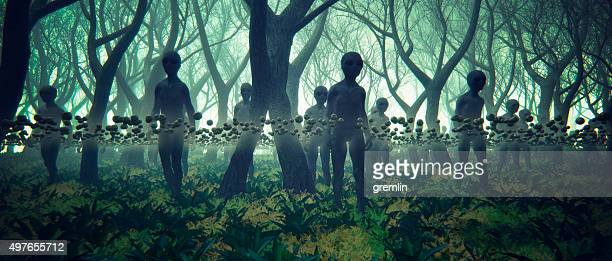 alien ufo invasion in the forest at night - alien stock photos and pictures