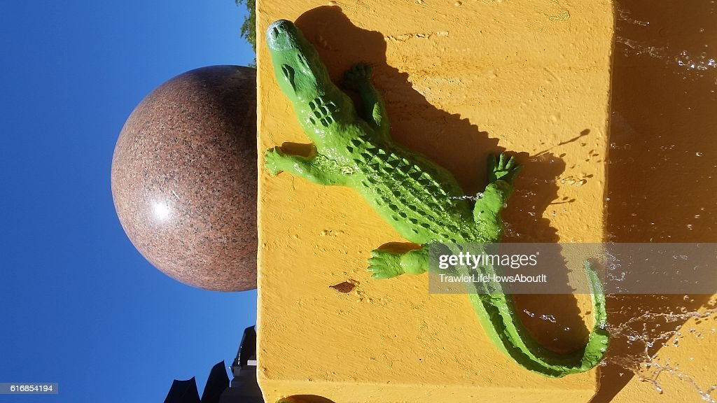 Aligator fountain : Stock Photo