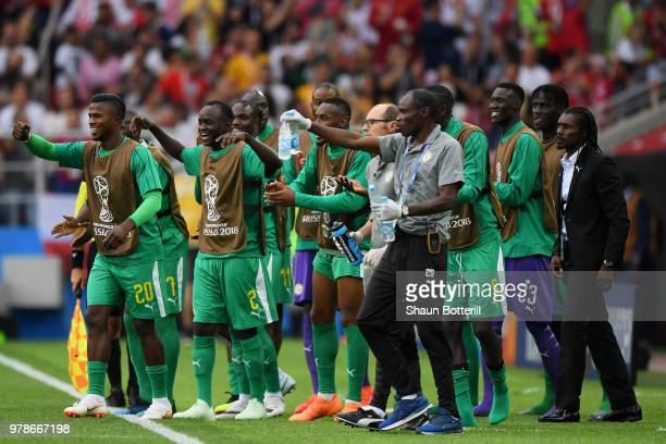Aliou Cisse Head coach of SenAliou Cisse Head coach of Senegal celebrates the first Senegal goal with the benhc of Senegal during the 2018 FIFA World...