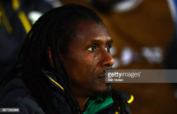 Aliou Cisse Manager of Senegal looks on during the International Friendly match between Nigeria and Senegal at The Hive on March 23 2017 in Barnet...