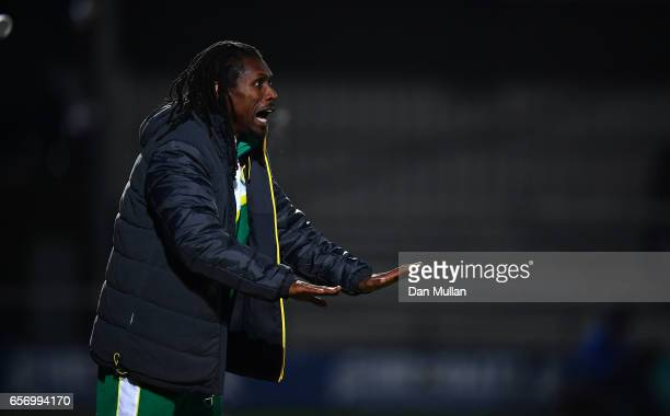 Aliou Cisse Manager of Senegal reacts during the International Friendly match between Nigeria and Senegal at The Hive on March 23 2017 in Barnet...