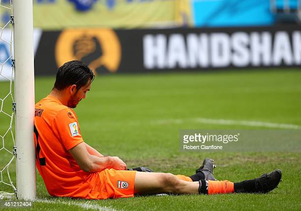 Alireza Haghighi of Iran looks on after the 2014 FIFA World Cup Brazil Group F match between Bosnia and Herzegovina and Iran at Arena Fonte Nova on...