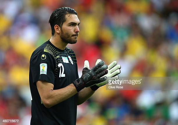 Alireza Haghighi of Iran looks on during the 2014 FIFA World Cup Brazil Group F match between Iran and Nigeria at Arena da Baixada on June 16 2014 in...