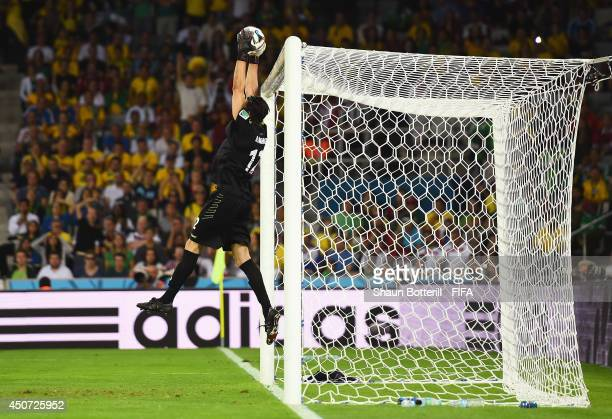 Alireza Haghighi of Iran makes a save during the 2014 FIFA World Cup Brazil Group F match between Iran and Nigeria at Arena da Baixada on June 16...