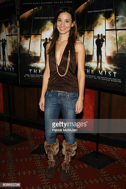 Alison Becker attends THE MIST Premiere at The Ziegfeld Theater on November 12 2007 in New York City
