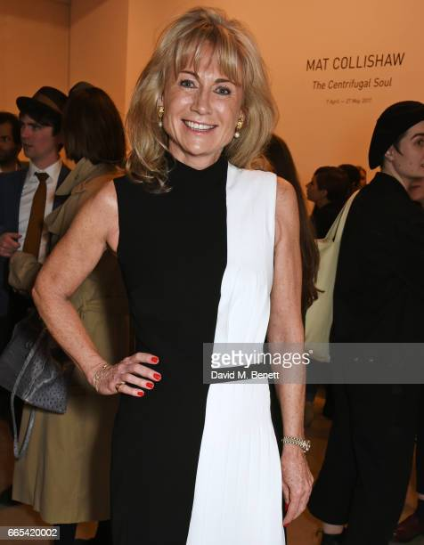 Alison Myners attends the Private View of 'Centrifugal Soul' by Mat Collishaw at Blain Southern on April 6 2017 in London England