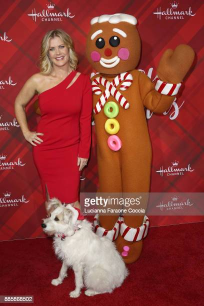 Alison Sweeney Gingerbread man and Happy the dog attend Hallmark Channel's Countdown To Christmas celebration and VIP screening of Christmas At Holly...