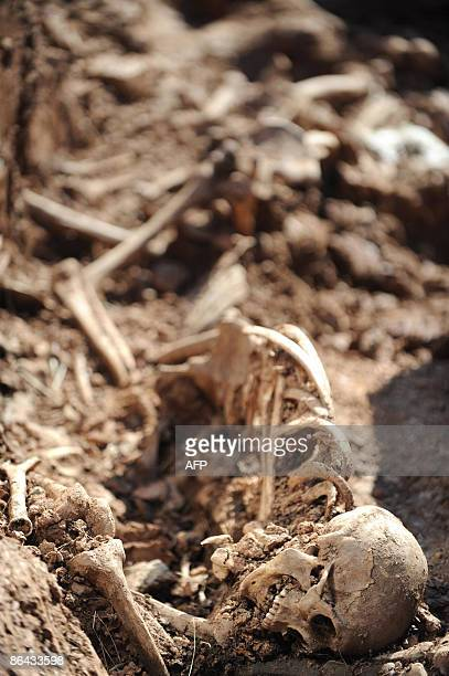Alissa DE CARBONNEL The bones of unidentified Soviet soldiers that were killed during WWII lie in a mass grave about 450km north of Moscow in...