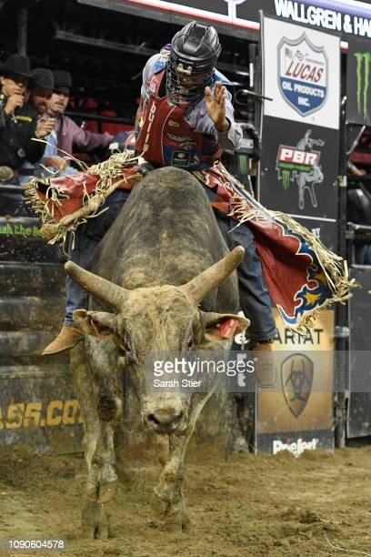 Alisson De Souza rides Short Pop during the PBR Unleash the Beast bull riding event at Madison Square Garden on January 06 2019 in New York City