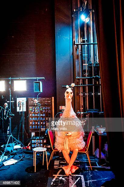 Alix Ross playing Pricilla The Goose waits stage left during a performance of Mother Goose at Hackney Empire on December 2 2014 in London England