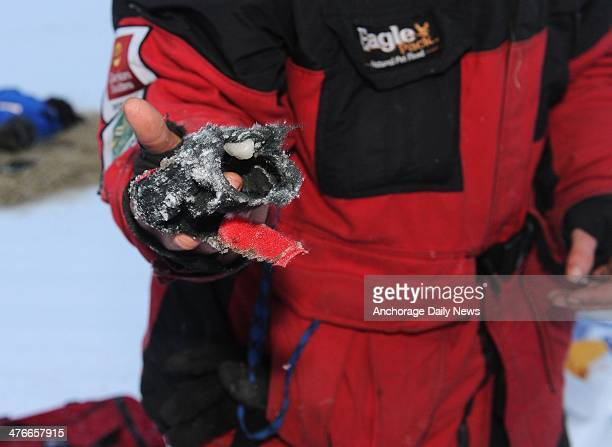 Aliy Zirkle shows one of her dog booties that is completely worn through after 25 miles on the Farewell Burn at the Nikolai checkpoint during the...