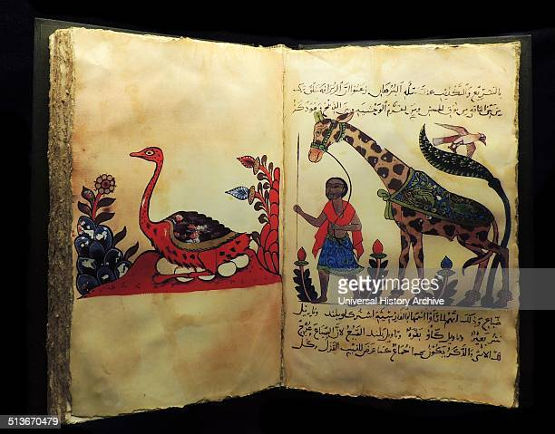AlJahiz was a philosopher poet zoologist and writer one of the few Muslim scientists Born in Bazra Iraq he was a celebrated writer who loved amusing...