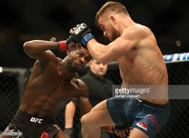 Aljamain Sterling and Cody Stamann in their Bantamweight bout during UFC 228 at American Airlines Center on September 8 2018 in Dallas United States